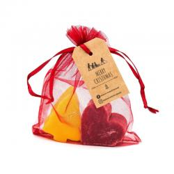 Organza Gift Bag with Christmas Soaps - Pine tree + Heart